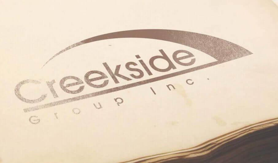 business logo design / graphic designer